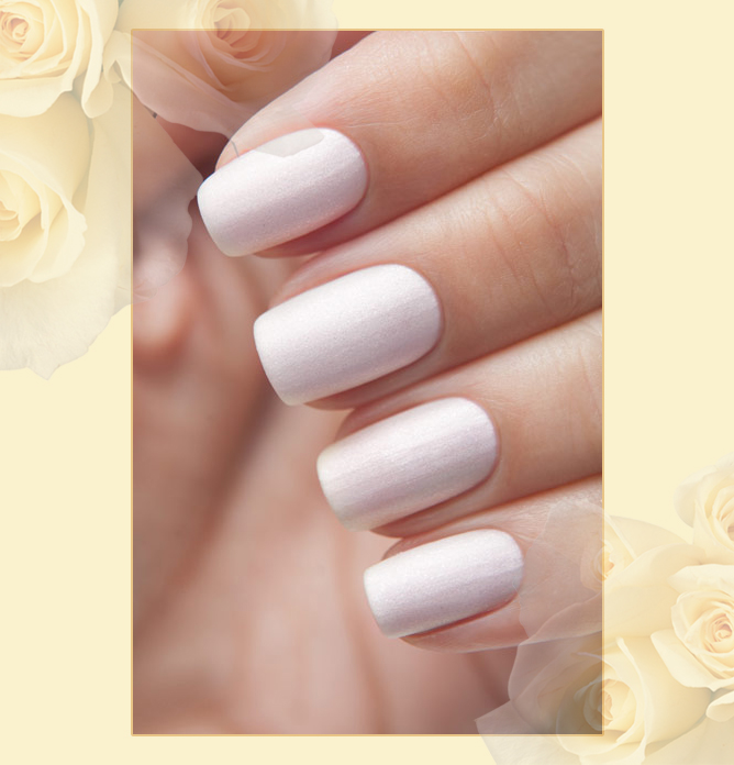 EL Corazon Matte Shine Effect №m&s - 173